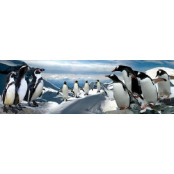 PANORAMA Jigsaw Puzzle - Penguins 120 Pces