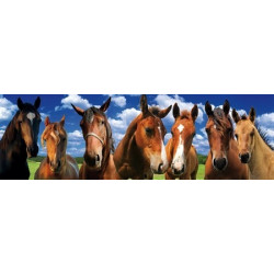 PANORAMA Jigsaw Puzzle - Horses 120 Pces