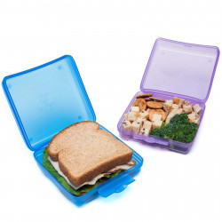Zak Finding Dory Reusable Sandwich Container BPA Free